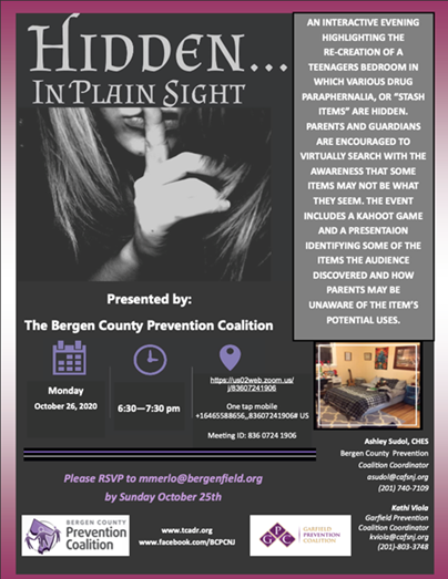 HIDDEN IN PLAIN SIGHT flyer